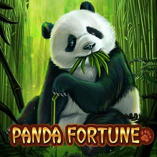 Name:  Panda Fortune.jpg Views: 14 Size:  91.6 KB